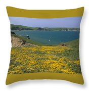 Chimney Rock Trail And Drakes Bay Throw Pillow