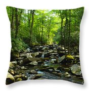 Chimney Tops Trail Throw Pillow