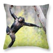 Chimp In Flight Throw Pillow