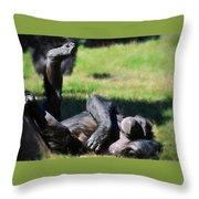 Chimp Sunbathing Throw Pillow