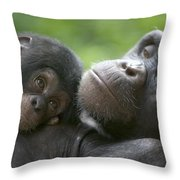 Chimpanzee Mother And Infant Throw Pillow