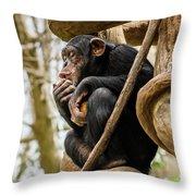 Chimpanzee, Nc Zoo Throw Pillow