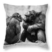 Chimpanzee Pair Throw Pillow