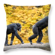 Chimpanzee Pair IIi Throw Pillow