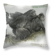 Chimps Sketch Throw Pillow