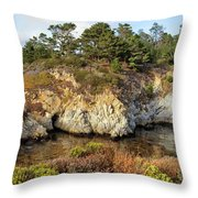 China Cove, Point Lobos Throw Pillow by Yair Karelic