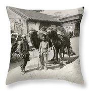 China: Peking, 1901 Throw Pillow