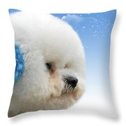 China's Latest Craze - Dyeing Pets Throw Pillow by Christine Till
