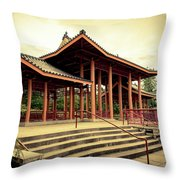 Chinese Bagota In Chicago's Chinatown Throw Pillow