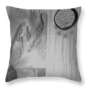 Chinese Garden Throw Pillow