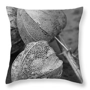 Chinese Lanterns In Black And White Throw Pillow
