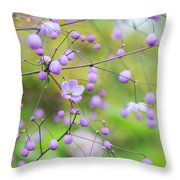 Chinese Meadow Rue Flowers Opening Throw Pillow