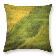 Chinese Worker Throw Pillow