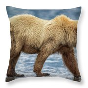 Chinitna Bay Brown Bear Throw Pillow