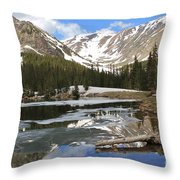 Chinns Lake Reflections 3 Throw Pillow