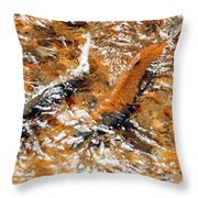Chinook In Cottage Lake Creek Throw Pillow