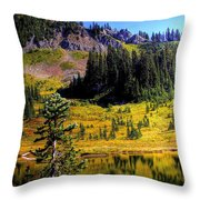 Chinook Pass Throw Pillow
