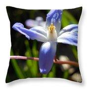 Chionodoxa Throw Pillow
