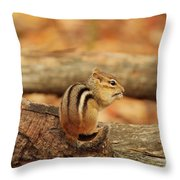 Chip On A Log Throw Pillow