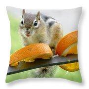 Chipmunk And Oranges 2 Throw Pillow
