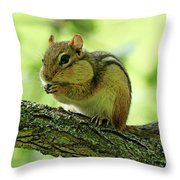 Chipmunk Cheeks Throw Pillow