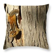 Chipmunk In Fall Throw Pillow