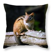 Chipmunk Portrait Throw Pillow