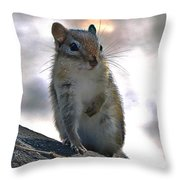 Chipmunk Up Close Throw Pillow