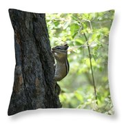 Chipmunks #1 Throw Pillow by Ben Upham III