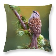 Chipper Looking Up Throw Pillow