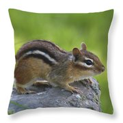 Chippy On The Move Throw Pillow