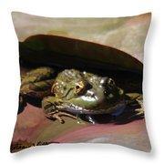 Chiricahua Leopard Frog Throw Pillow