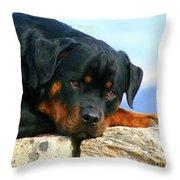 Chiron The Rottweiler  Throw Pillow