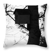 Chirping Messages  Throw Pillow