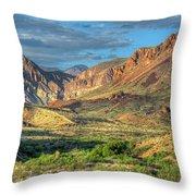 Chisos Mountains Of West Texas Throw Pillow