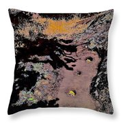 Chitactac Ohlone Site Throw Pillow
