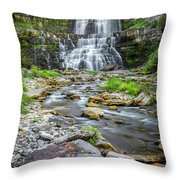 Chittenango Falls In Autumn  Throw Pillow