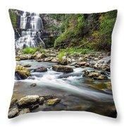 Chittenango Falls  Throw Pillow