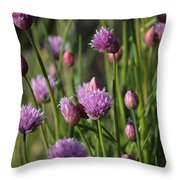 Chive Flowers Throw Pillow