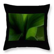 Chlorophylls Selectivity Throw Pillow