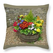 Chock Full Of Color Throw Pillow
