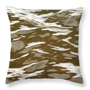 Chocolate And Marshmallows Throw Pillow