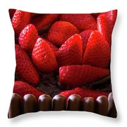 Chocolate And Strawberry Cake Throw Pillow