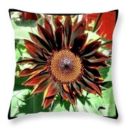 Chocolate Sunflower Throw Pillow