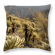 Cholla Cactus And Ocotillo Plants Throw Pillow