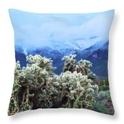 Cholla Cactus And Superstition Mountains Throw Pillow