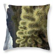 Cholla Cactus Throw Pillow