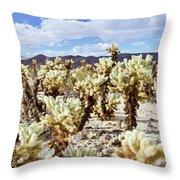 Cholla Desert Garden Throw Pillow