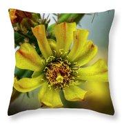 Cholla Flower H1848 Throw Pillow