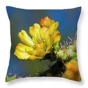 Cholla Flower H40 Throw Pillow